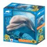 3DΠαζλ48 Animal Planet – Dolphin