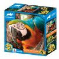 3DΠαζλ48 Animal Planet – Parrot
