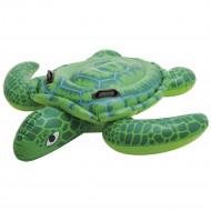 Φουσκωτή Χελώνα (03.I-57524)